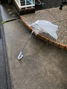 台風7号 強風域
